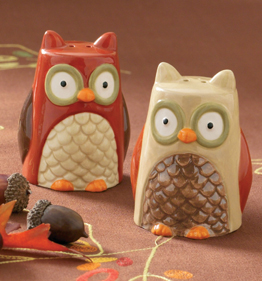Whimsical Owl Salt & Pepper Shakers, Set of 2